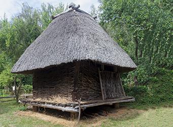 Vom Boden isolierte Reetdachhütte