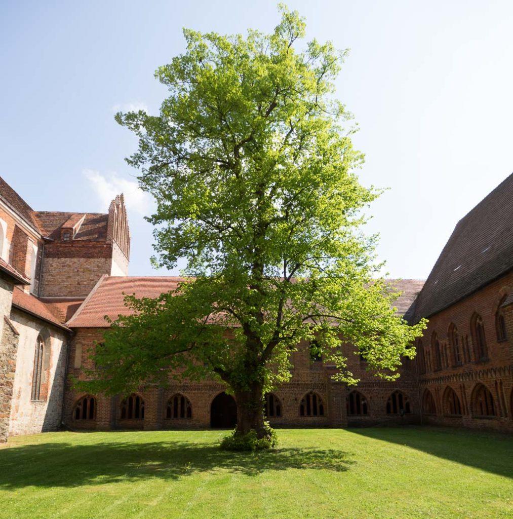 Kreuzgarten und Klausur von großer Schönheit und kulturhistorischer Bedeutung