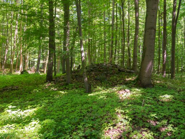 Steinhügelgrab der Bronzezeit, Uckermark